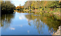 J3675 : Lake, Victoria Park, Belfast (2) by Albert Bridge