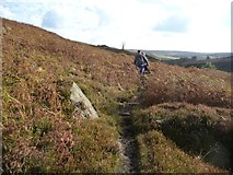 NZ6502 : Dog walkers on the Esk Valley Way by Christine Johnstone