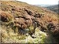 NZ6502 : Water mains marker, Esk Valley Way by Christine Johnstone