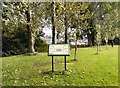 SJ8990 : Heaton Norris Community Orchard by Gerald England