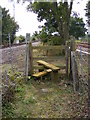 TM3863 : Stile on the footpath to North Entrance by Adrian Cable