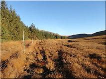 NR8939 : Glen Scaftigill by Brian Robertson