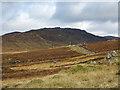NN5365 : Estate road  on slopes above Allt Ghlas by Trevor Littlewood