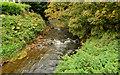 J2689 : The Doagh River, Doagh by Albert Bridge