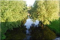 TG1508 : River Yare, Bawburgh by N Chadwick
