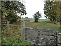NZ2320 : Track and bridleway to Walworth Moor Farm by Christine Johnstone