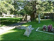 ST5707 : Melbury Osmond Churchyard (8) by Basher Eyre
