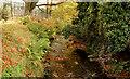 J4173 : Stream, Dundonald (2) by Albert Bridge