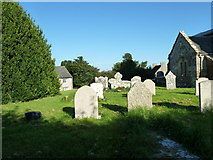 SY5697 : SS Andrew & Peter, Toller Porcorum: churchyard (2) by Basher Eyre