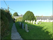 SY5697 : SS Andrew & Peter, Toller Porcorum: churchyard (5) by Basher Eyre