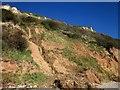 SY1787 : Stream down Coxe's Cliff by Derek Harper