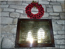 SY5697 : SS Andrew & Peter, Toller Porcorum: war memorial (1914-18) by Basher Eyre