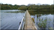 SR9794 : Footbridge at Bosherston lily ponds by Gordon Hatton