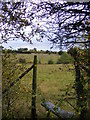 TM2953 : Footpath to the A12 Ufford Bypass & Spring Lane by Adrian Cable