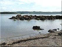 NX6548 : Gull Craig rocks at high tide by Ann Cook