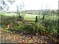 TQ4661 : View over a stile from Charmwood Lane by Marathon