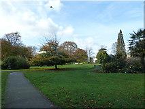 SU4212 : An autumnal anti-clockwise stroll (2b) by Basher Eyre