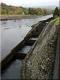 NN9357 : Salmon ladder by Andrew Abbott