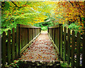 J3332 : Footbridge, Tollymore Forest Park by Rossographer