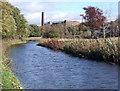 SJ9392 : Peak Forest Canal by Stephen Burton
