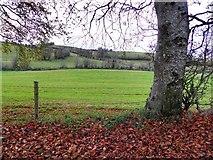 H5064 : Gortaclare Townland by Kenneth  Allen