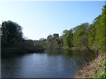 NS6859 : River Clyde and Bothwell Castle by Alan O'Dowd
