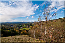 TQ2451 : Colley Hill by Ian Capper