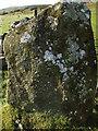 SN1431 : Bluestone Gatepost with Benchmark by Matthew Hatton