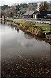 SJ6903 : Shropshire canal by Ashley Dace