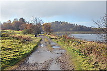 NM9634 : End of the public road at Achnacloich by Steven Brown
