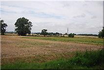 TQ9293 : Farmland, Paglesham by N Chadwick