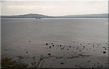 J3979 : Belfast Lough from the approach to Holywood Station by Eric Jones