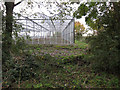 TL4986 : New greenhouse by Pygore Drove by Hugh Venables