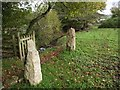 SX8385 : Stone gateposts in field below Christow church by David Gearing