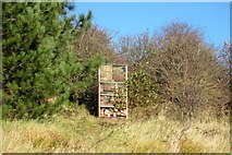 SD1779 : Insect House Millom Ironworks Local Nature Reserve by Perry Dark