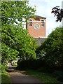 SX9291 : Clock tower, Devon County Hall by Derek Harper