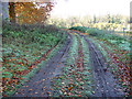 TG2004 : Farm track skirting Fir Hill, Keswick by Evelyn Simak