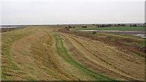 TQ9593 : Farmland behind the embankment by Roger Jones