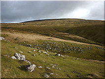 SD7399 : Outcropping limestone above Clouds Gill, Wild Boar Fell by Karl and Ali