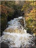 NN6408 : Bracklinn Falls by Carol Walker