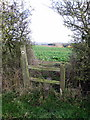 SP9930 : Path through the hedge to Lodge Farm by Philip Jeffrey