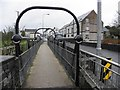 H3438 : Pedestrian bridge, Maguiresbridge by Kenneth  Allen