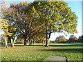 TQ2169 : Malden Golf Course in autumn by Marathon