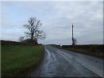 NZ3318 : Bishopton Lane towards Petty's Nook by JThomas