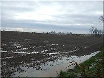 NZ3418 : Farmland off Hill House Lane by JThomas