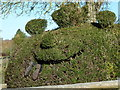 SU7887 : Hedge Monster by Mark Percy