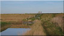 TQ9293 : Loftmans Sluice by Roger Jones