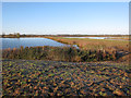 TL3877 : Earith gravel pits by Hugh Venables