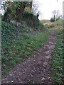SU0697 : Remains of Humpback Bridge, Thames & Severn Canal by Vieve Forward