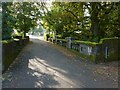 NS3879 : Vale of Leven Cemetery: the lower bridge by Lairich Rig